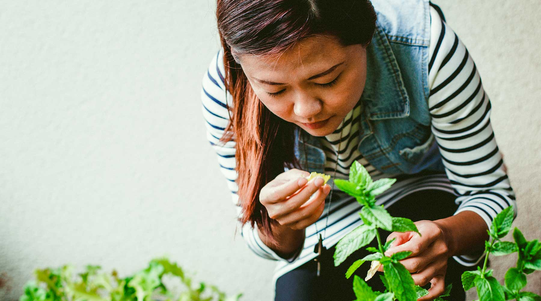 Does It Cost Less To Grow an Herb Garden?